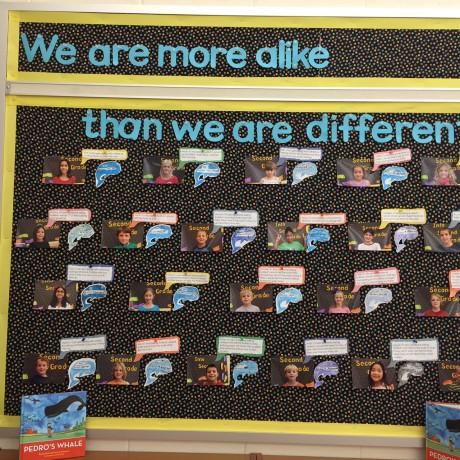 Whale Bulletin Board